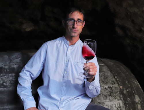 Getting to Grips with Garnacha